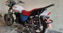Moto Fekon 150-BG 2019 White Used